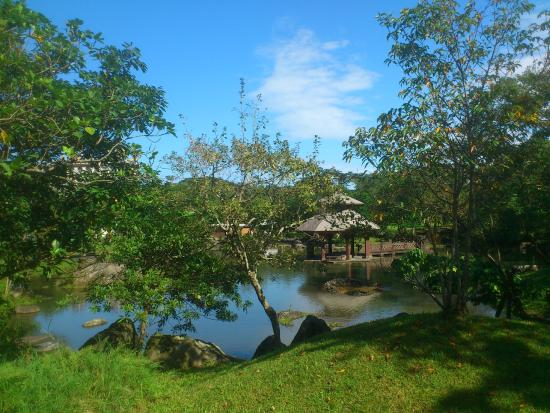 羅東運動公園:小橋