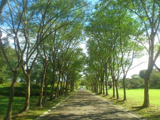 羅東運動公園:步道