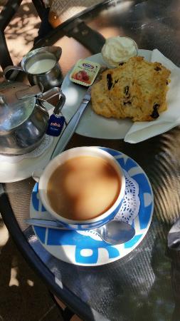Rocklatino Caffe: Good Tea and date scone