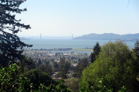 view of golden gate bridge berkeley municipal rose garden berkeley ca - Berkeley Rose Garden