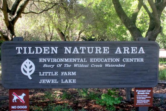 Tilden Park Little Farm: Tilden Park Little Park, Berkeley, Ca