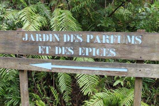 Magnifique c 39 est tout photo de jardin des parfums et des - Le jardin des parfums et des epices saint philippe ...