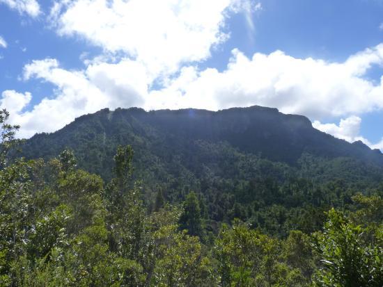 Kauaeranga Valley Visitor's Centre : Viewpoint