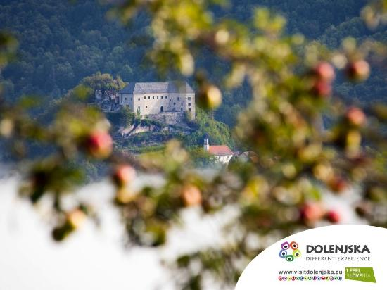 Lower Carniola Region, Slovenia: Kostel castle