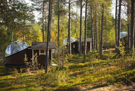 Nellim Wilderness Hotel : #Aurora Bubbles in Autumn