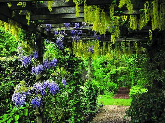Barnsdale Gardens (Oakham) - TripAdvisor: Read Reviews ...
