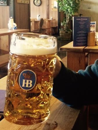 Big Beer - Picture of Hofbrau Wirtshaus Berlin - Tripadvisor