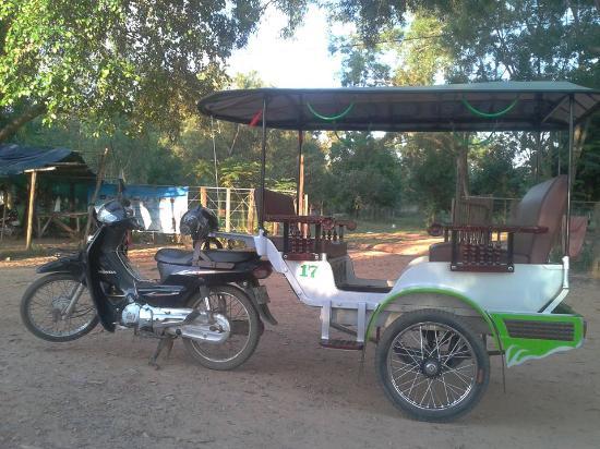 Tuktuk Angkor Driver - Day Tours