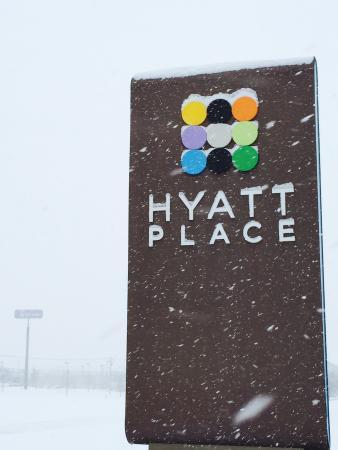 Hyatt Place Lexington: Hyatt Place in a Blizzard