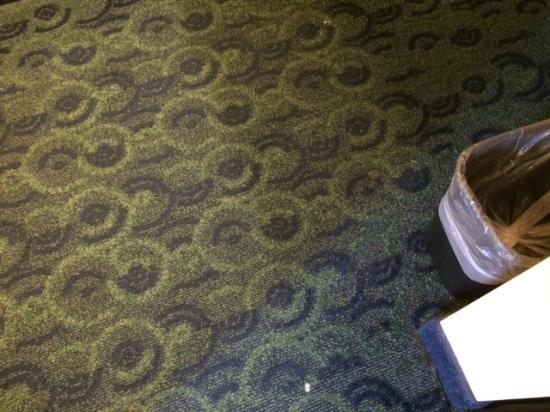 SpringHill Suites Birmingham Colonnade: Toothpaste and gum on carpet by bathroom sink.