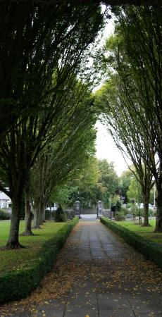 Celtic Park and Gardens: Main walk
