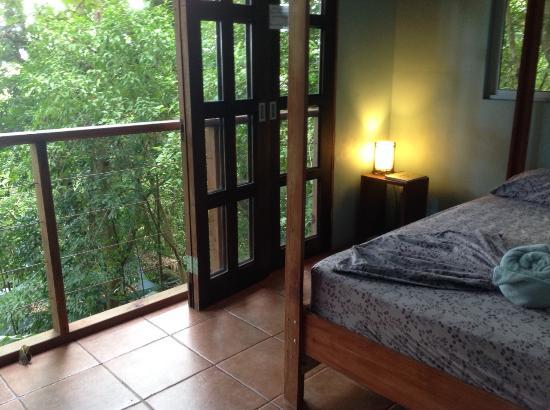 Luz en el Cielo Eco-B&B/Hostel: Vista Cabina