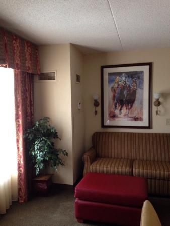 Homewood Suites by Hilton Lexington - Hamburg: Kentucky theme decor