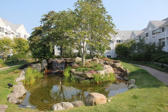 Two Trees Inn: Courtyard waterfall