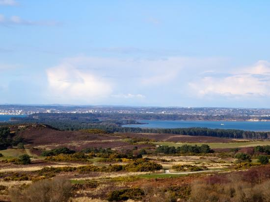 Bindon Bottom B&B: Poole harbour from the Purbeck hills
