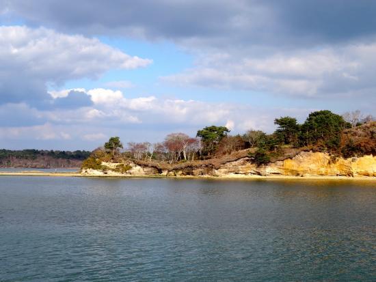 Bindon Bottom B&B: Brownsea island