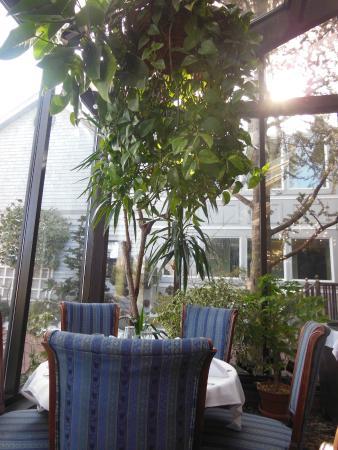 The Dan'l Webster Inn Restaurant: View in the Restaurant during Breakfast