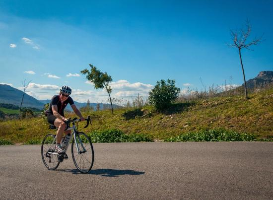 Andalucian Cycling Experience Day Trips: The hill back into Montecorto.