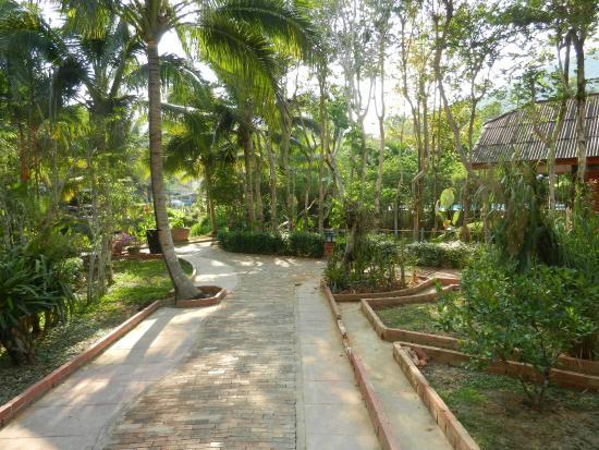 Green View Village Resort: la verdure de l'hotel