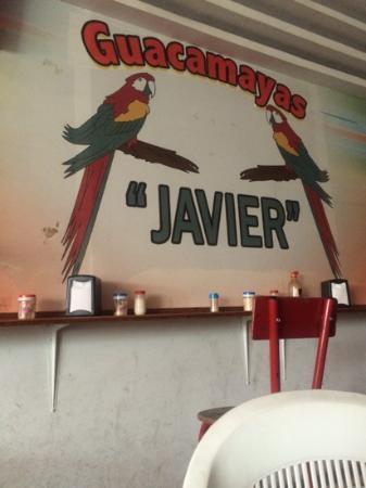 Guacamayas Javier
