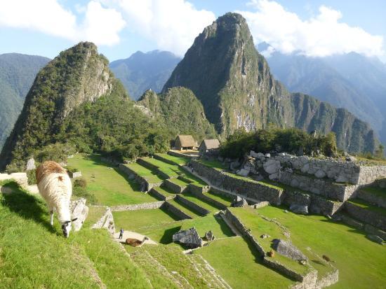 Machupicchu Trips Peru