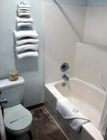Silver Sands Oceanfront Motel: Bathroom