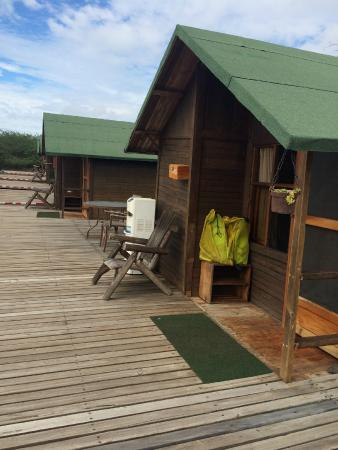 Floreana Lava Lodge: Another View of the cabins