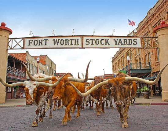 The Top 10 Things to Do in Fort Worth TripAdvisor Fort Worth – Dallas Texas Tourist Attractions Map