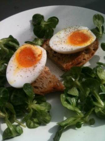 Sage: Eggs how I like them!
