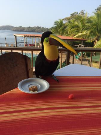 San Jose Island, Panama: Lucas