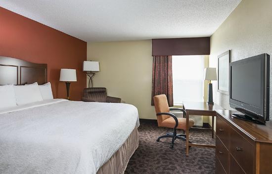 Hampton Inn Mansfield/Ontario: King Guestroom