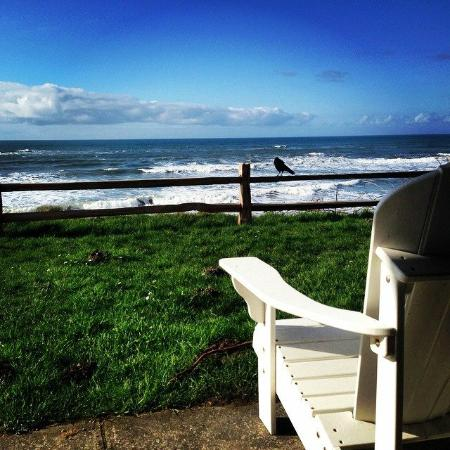 Kalaloch Lodge Lounge Chairs