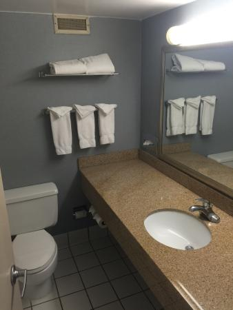 Holiday Inn Rock Island - Quad Cities: Bath