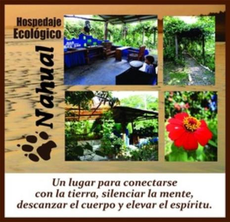 Hospedaje Ecologico Nahual : connect with mother earth