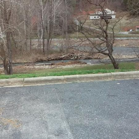 Quality Inn: the creek that runs behind the motel