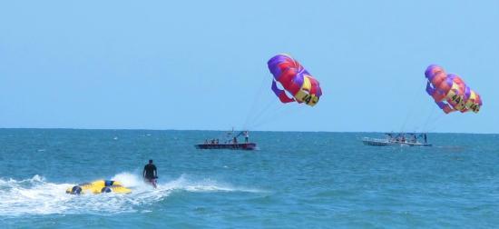 Ocean Watersports Myrtle Beach Reviews