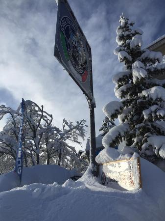 Oneleven Snowboard & Freeski School