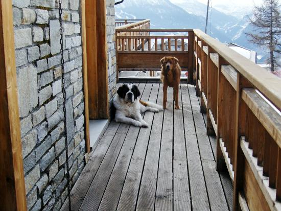 L Accroche Coeur: In the area of the Col du Petit St Bernard what more natural than the eponymous dog and her frie