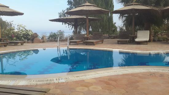 The Bedouin Moon Hotel: Pool area