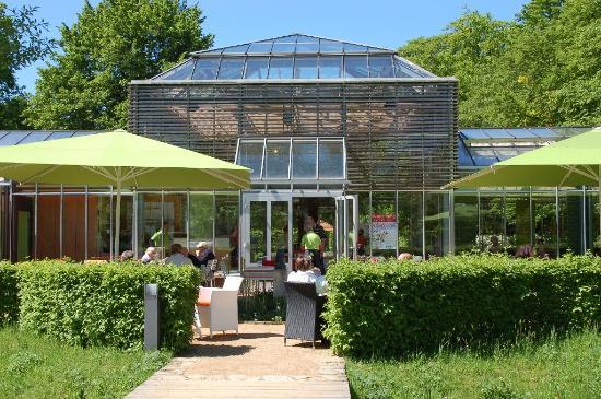 Palmenhaus Café