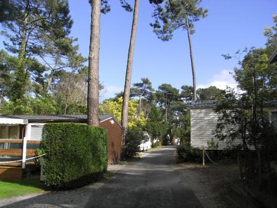 Camping Club d'Arcachon : bloc sanitaire