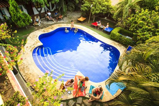 The Dreamer Hostel: piscina