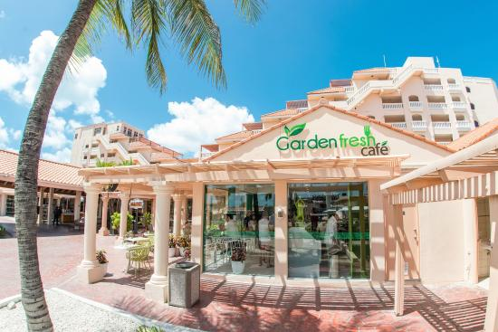 Italian Restaurants Near Palm Beach Aruba