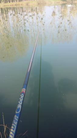 Les 3 Étangs : ma canne a pêche