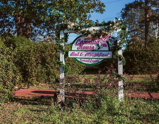 Luverne, AL: Sign & Cat!