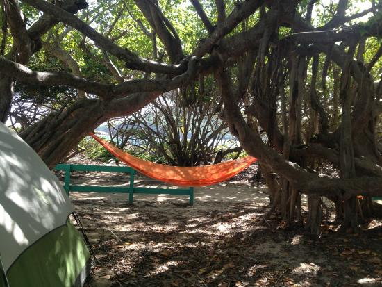"Flamenco Beach Campground : Our ""room"" for the night"