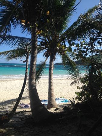 Flamenco Beach Campground: View from the campsite