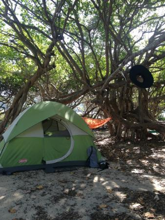 Flamenco Beach Campground : Our tent/campsite