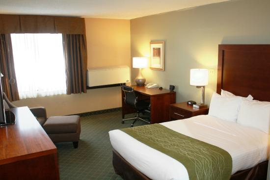 Comfort Inn Plymouth: Single Double Guest Room