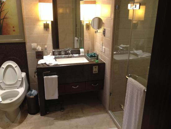 Fulejiuzhou International Hotel : Bathroom
